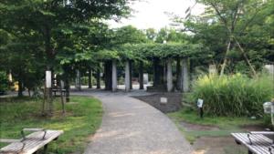 築地川公園(北側)