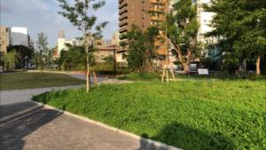 築地川公園(南側)