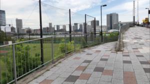晴海臨海公園(ドッグラン/わんわん広場)